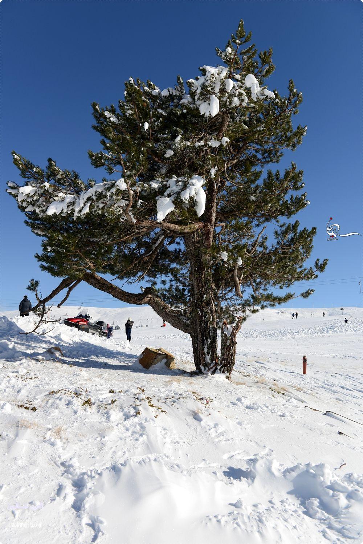 جمال الأجواء الثلجية في تركيا ؛ تقرير مصور يناير 2015 م [سليمان المطرودي]