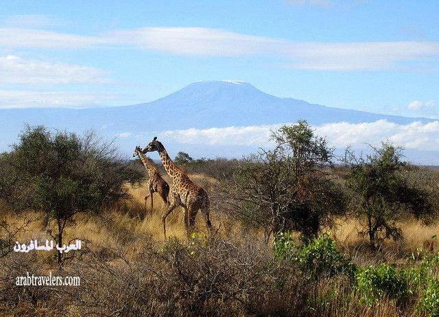 أهم المعالم السياحية في كينيا 2015