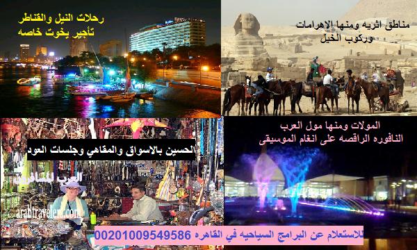 كل ما يلزمك في مصر