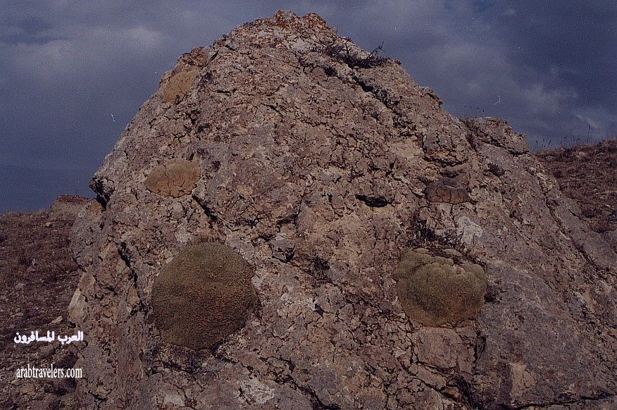 جبل الجودي