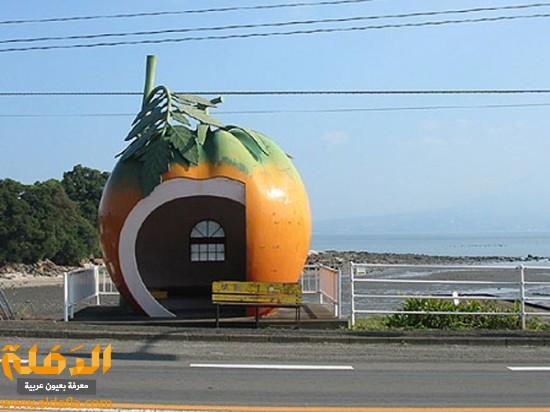 travel_tours_images_1340268283_165.jpe