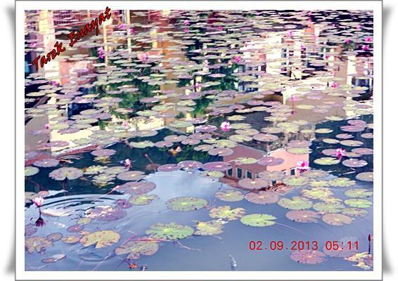 travel_photo_tours_1382005286_128.jpg