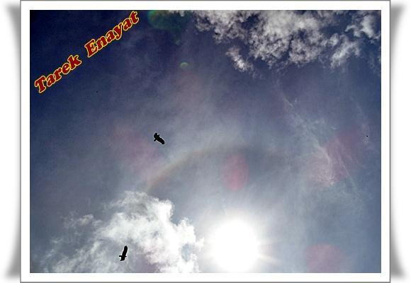 travel_photo_tours_1382005989_615.jpg