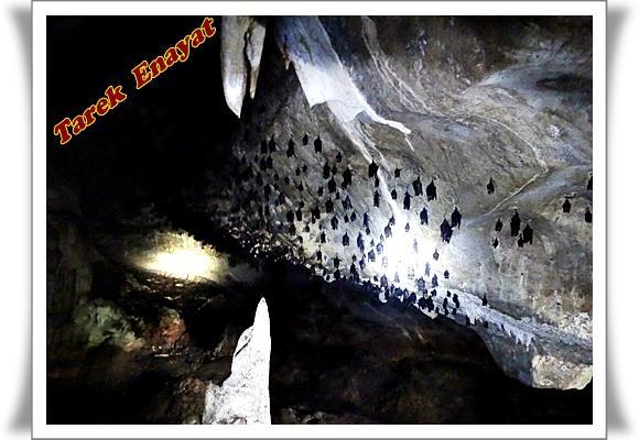 travel_photo_tours_1382005951_789.jpg