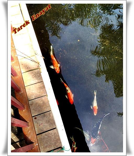 travel_photo_tours_1382006558_566.jpg