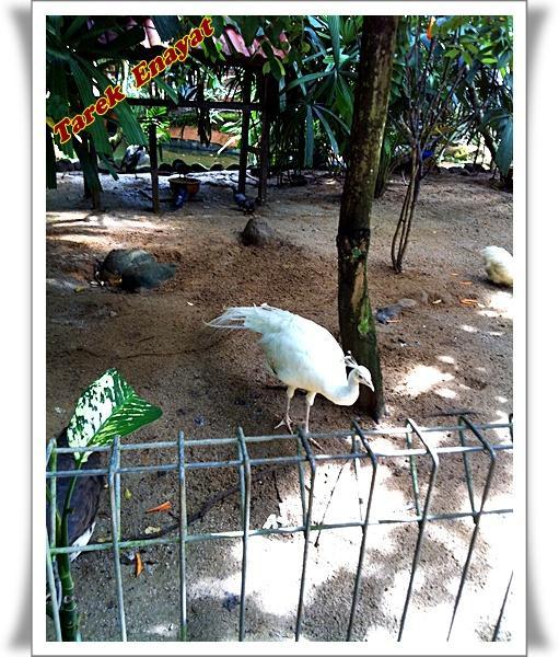travel_photo_tours_1382006498_861.jpg