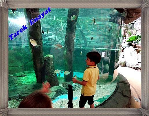 travel_photo_tours_1382006520_475.jpg