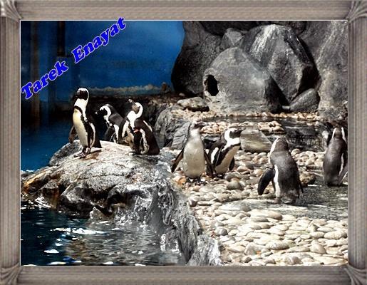 travel_photo_tours_1382006483_568.jpg