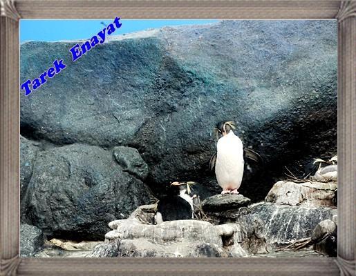 travel_photo_tours_1382006496_915.jpg
