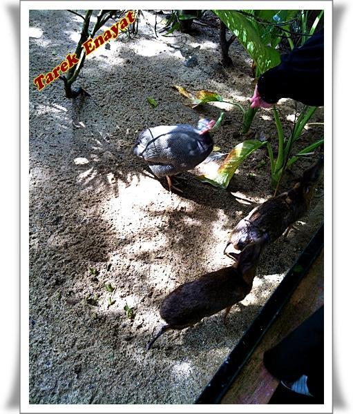 travel_photo_tours_1382006578_615.jpg