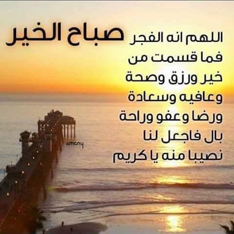 12227838_1649838688625850_1360363786544037121_n.jpg