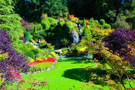 حدائق بوتشاآرت فى كندا ( صور رائعة ) 178097 المسافرون العرب
