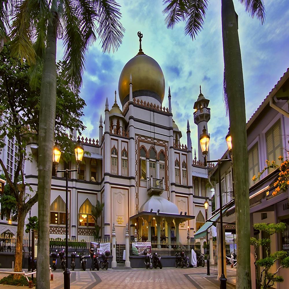 اماكن ساحرة في سنغافورة 212979 المسافرون العرب