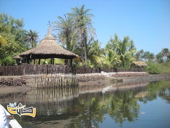 26219 المسافرون العرب معلومات وجولة سياحية الى جمهورية جامبيا الافريقية