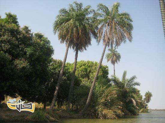 26221 المسافرون العرب معلومات وجولة سياحية الى جمهورية جامبيا الافريقية