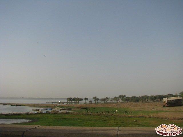 33352 المسافرون العرب رحلة صيد في السودان مدينة الدامر