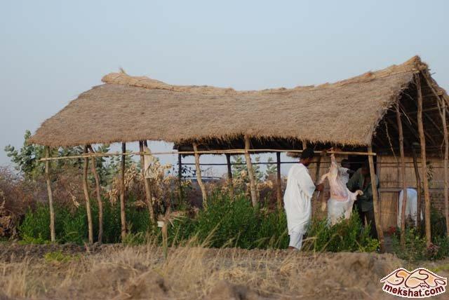 33360 المسافرون العرب رحلة صيد في السودان مدينة الدامر