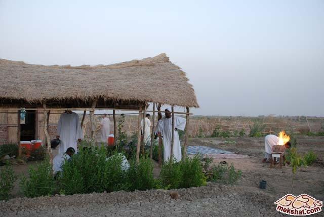33367 المسافرون العرب رحلة صيد في السودان مدينة الدامر