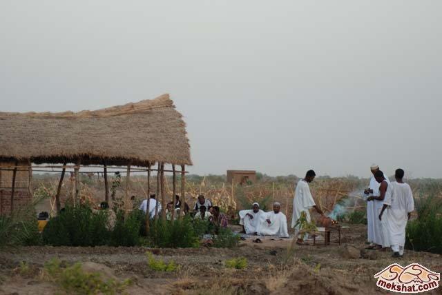 33368 المسافرون العرب رحلة صيد في السودان مدينة الدامر