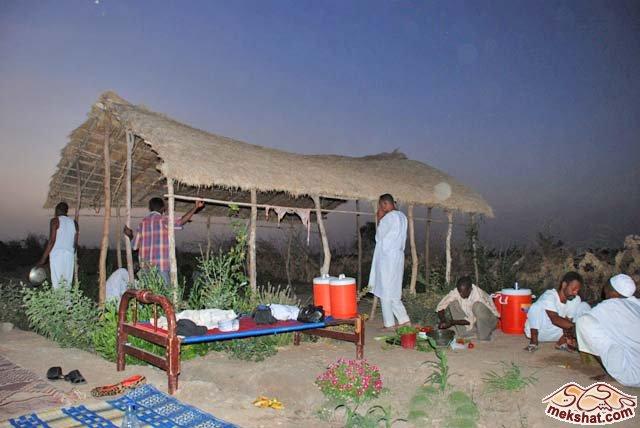 33369 المسافرون العرب رحلة صيد في السودان مدينة الدامر
