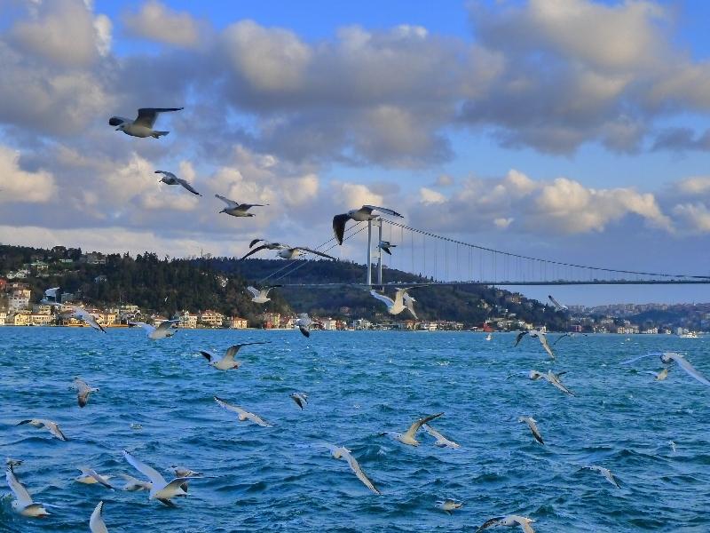 381481 المسافرون العرب ماتدري وين تروح في اسطنبول ؟ تعرف على اجمل 10 اماكن سياحية فيها