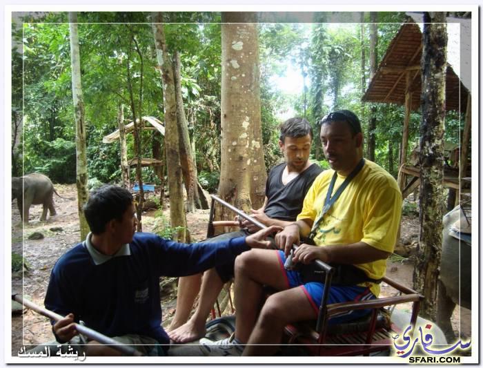 38590 المسافرون العرب تقرير رحلتى الي تايلاند بالصور - السياحة فى تايلاند