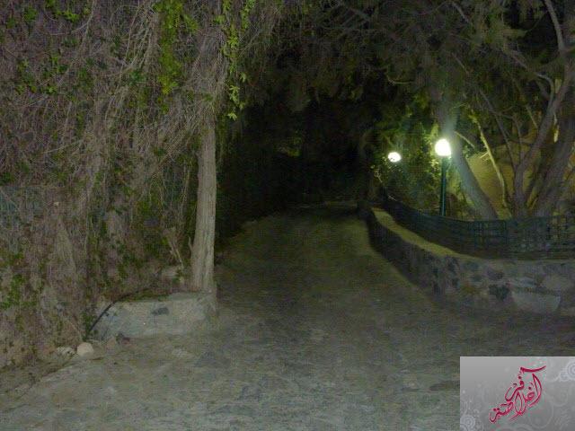 مرتفعات الشفا 399678 المسافرون العرب
