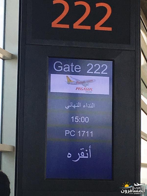 arabtrvl150800701941.jpg
