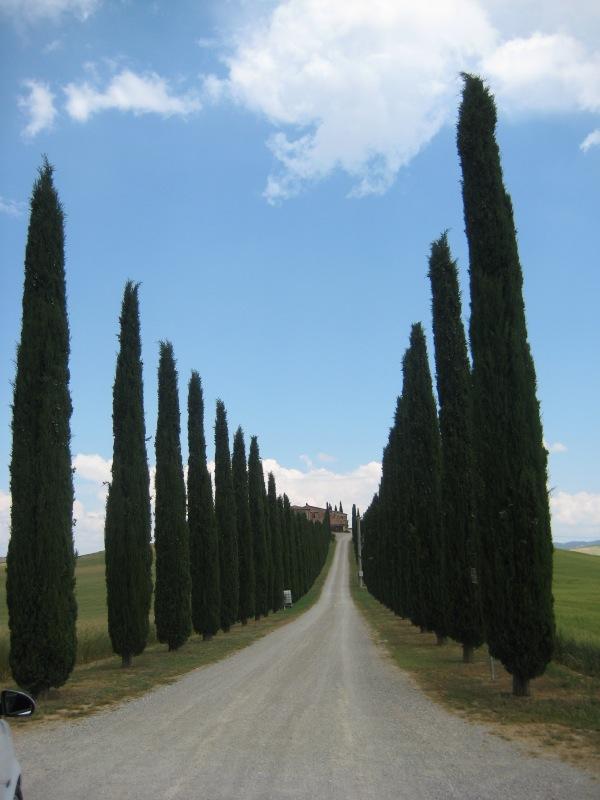 تقرير رحلتى الى ايطاليا بالصور 410841 المسافرون العرب