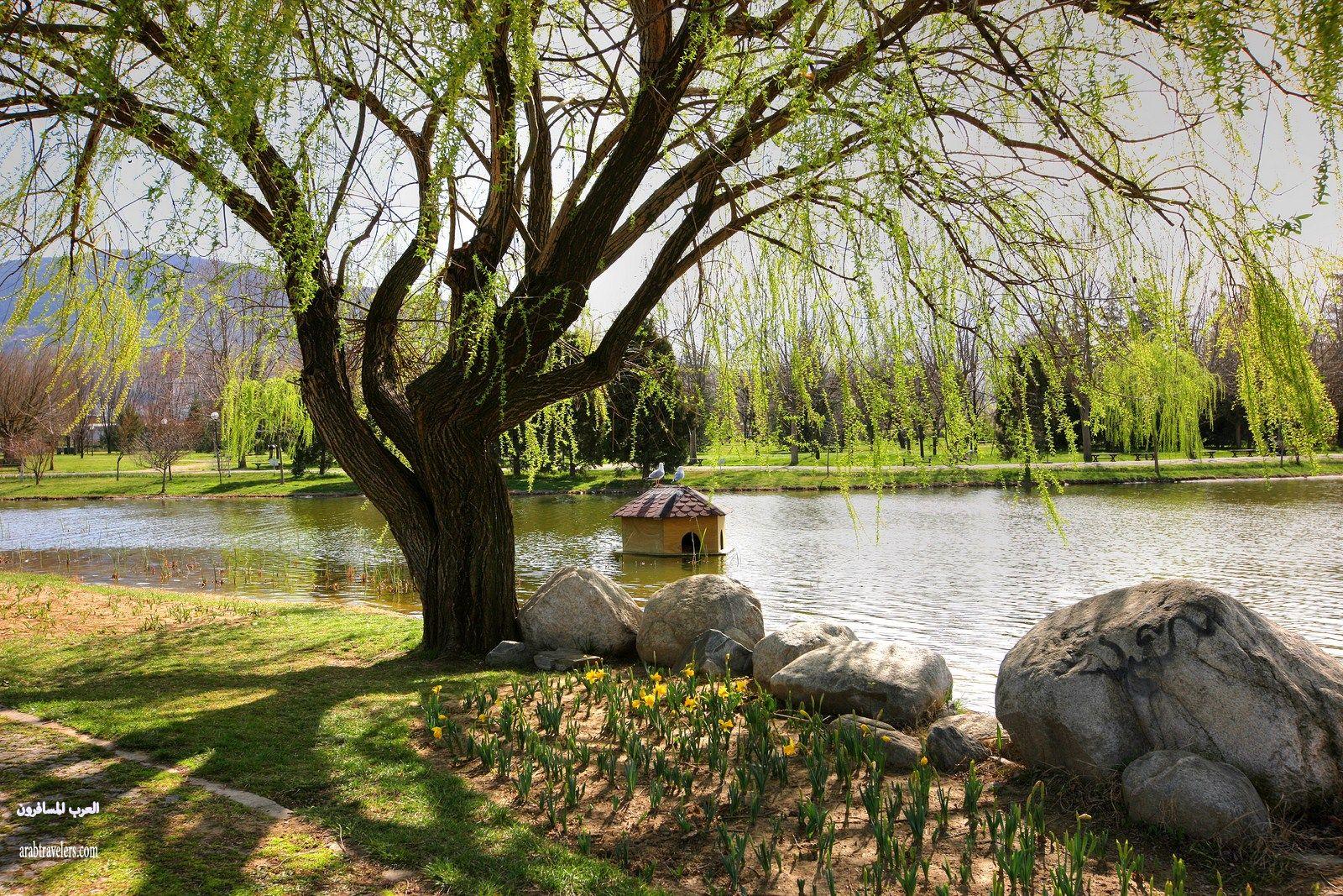 411071 المسافرون العرب اجمل صور حدائق تركيا