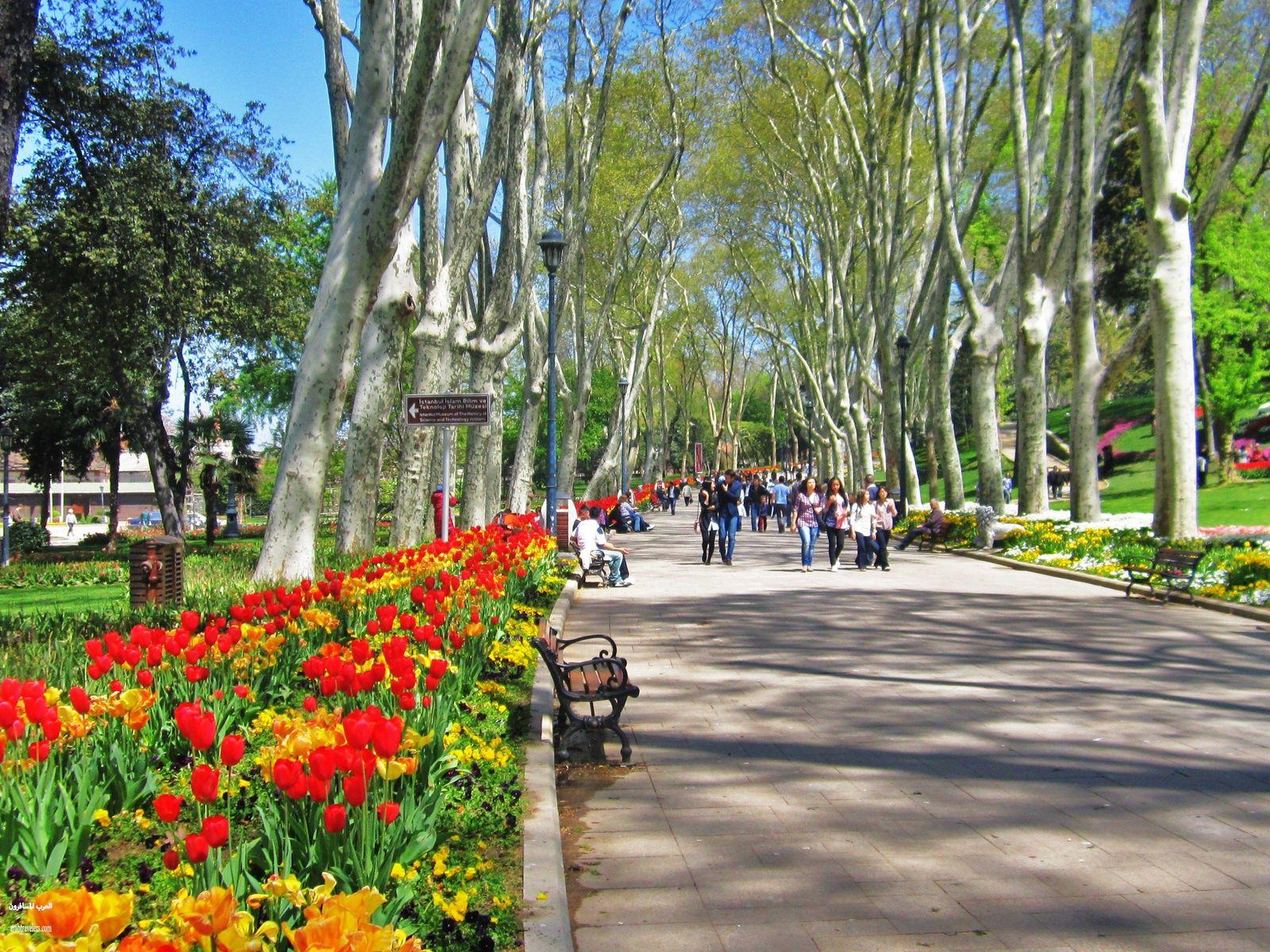 411076 المسافرون العرب اجمل صور حدائق تركيا