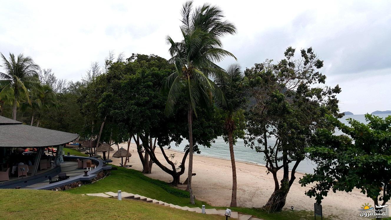 446023 المسافرون العرب صفة الجمال المطلق ماليزيا