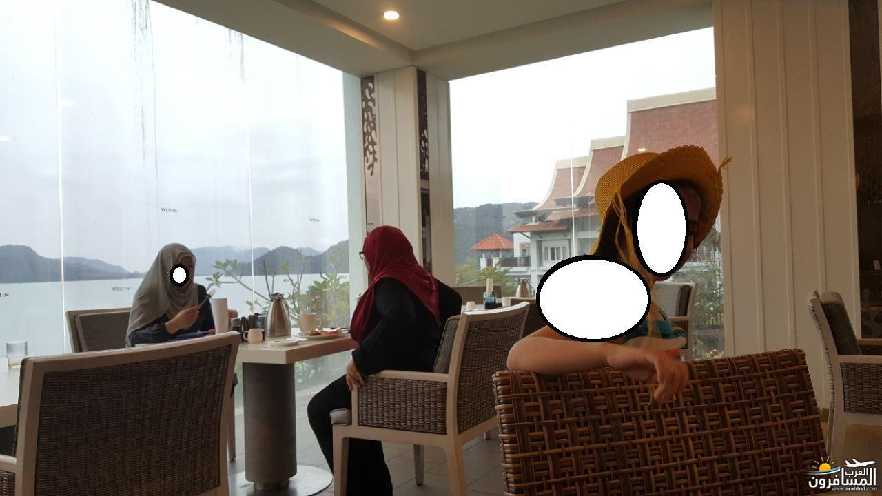 446219 المسافرون العرب صفة الجمال المطلق ماليزيا