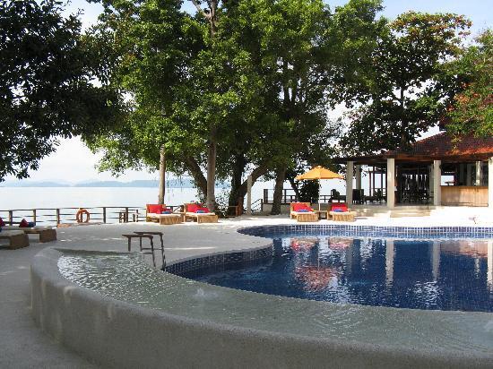 the-pool.jpg