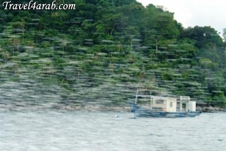 453913 المسافرون العرب جزيرة تيومان عالم تحت الماء