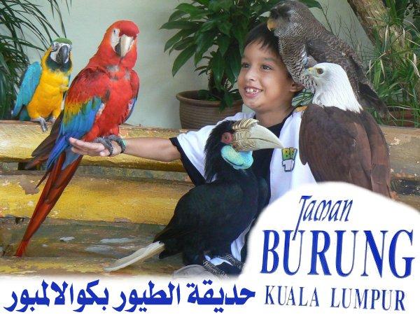 454061 المسافرون العرب منتزهات - حدائق ماليزيا