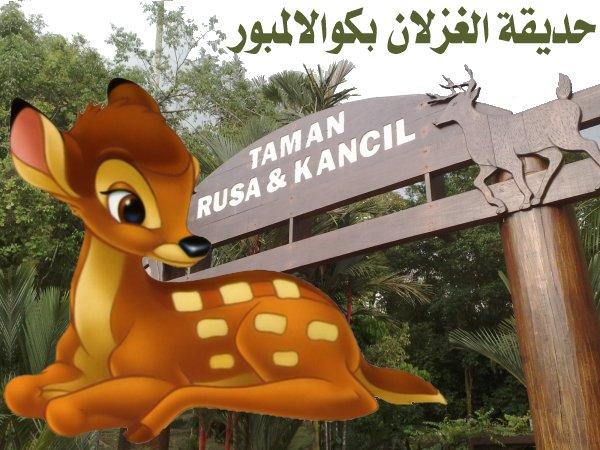 454063 المسافرون العرب منتزهات - حدائق ماليزيا