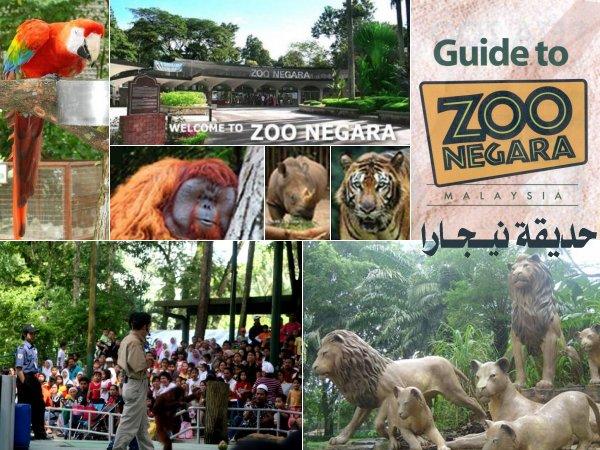 454069 المسافرون العرب منتزهات - حدائق ماليزيا