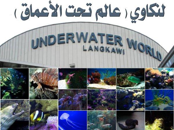 454075 المسافرون العرب منتزهات - حدائق ماليزيا