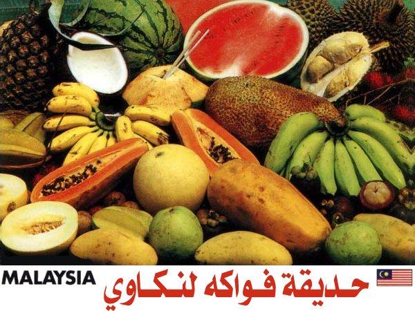 454076 المسافرون العرب منتزهات - حدائق ماليزيا