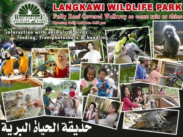 454077 المسافرون العرب منتزهات - حدائق ماليزيا