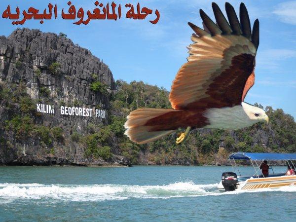 454078 المسافرون العرب منتزهات - حدائق ماليزيا