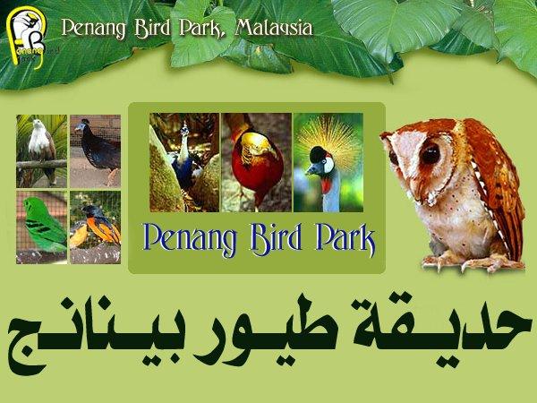 454083 المسافرون العرب منتزهات - حدائق ماليزيا