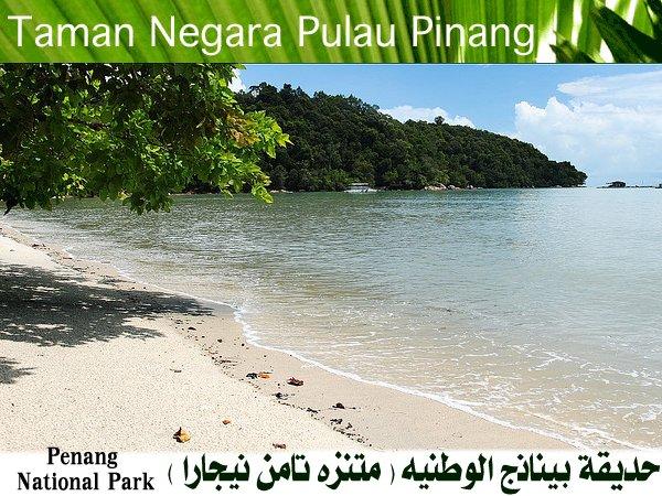 454085 المسافرون العرب منتزهات - حدائق ماليزيا