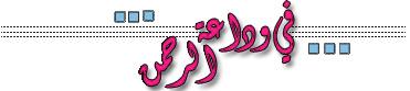 454269 المسافرون العرب أحلى معجنات وحلويات bread history