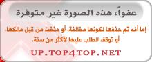 456337 المسافرون العرب بلاد الاندومى العشق اندونيسيا