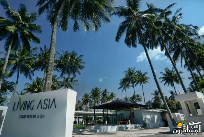 456405 المسافرون العرب جزيرة لومبوك في منتجع living asia resort and spa