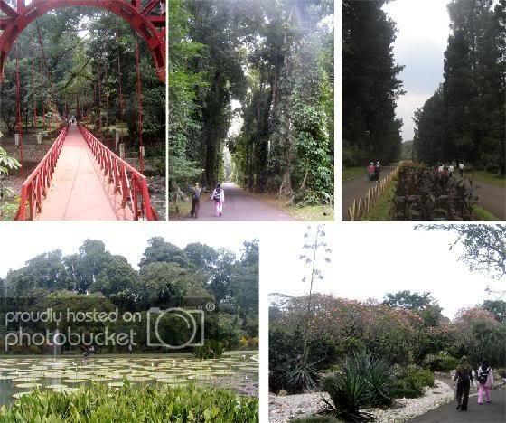BotanicalGarden1.jpg