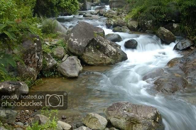 Theriver2.jpg