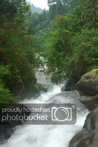 Waterfalls5.jpg